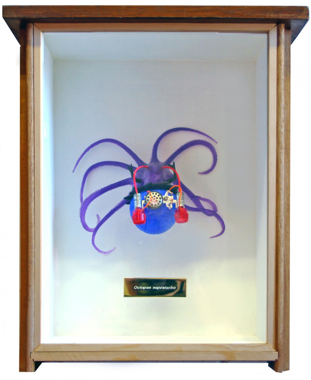 octopus1-2